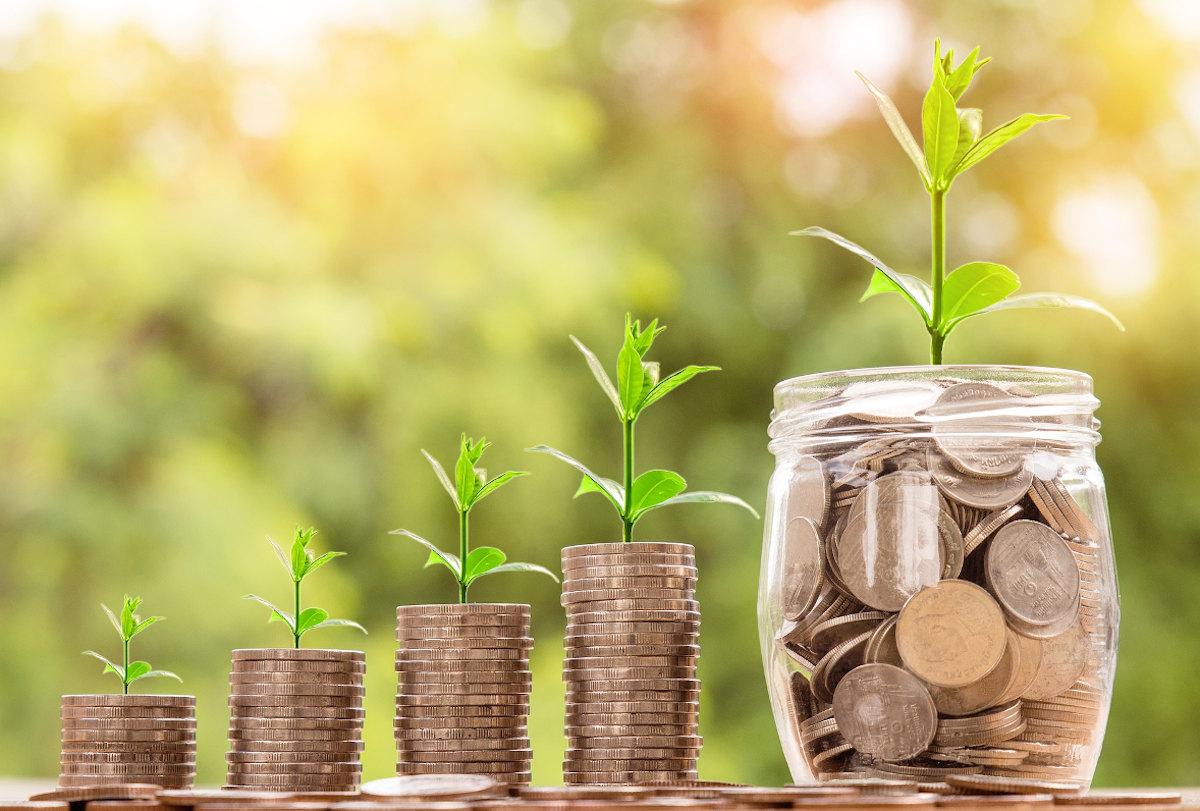 Energieeffizienz und Prozesswärme anhand eines wachsenden Stapels aus Geld aus dem Pflanzen wachsen